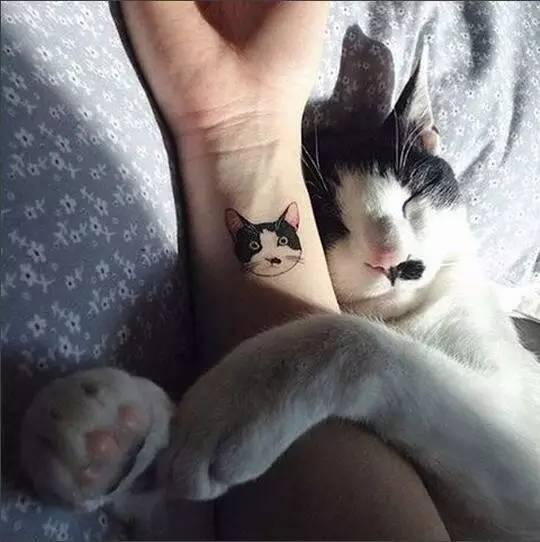 """你用刺青耍酷?我用""""纹身""""卖萌!"""