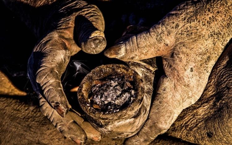 伊朗老大爷60年未洗澡,网友:还是个老炮儿