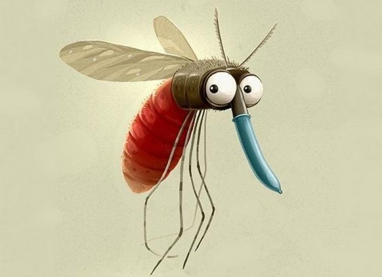 【真相帝】蚊子喜欢的是你的味道,才不是血型