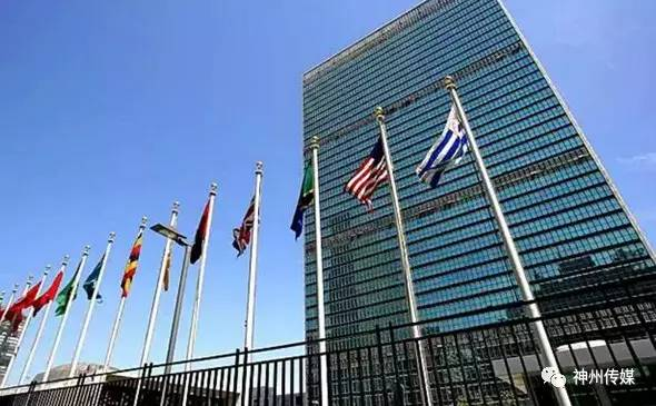 今日芝加哥:提议退出联合国!川普回应游行!