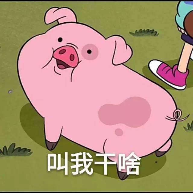 可爱胖子动画图片