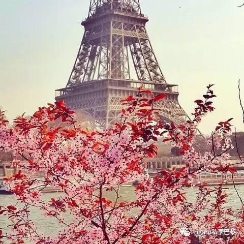 巴黎铁塔下的 champ de