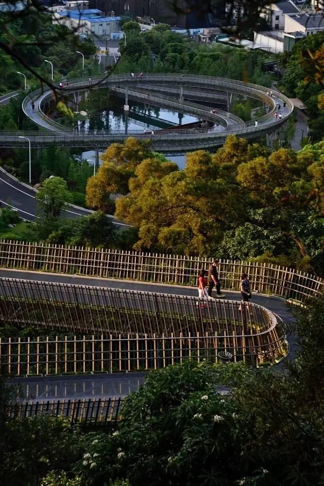 福州中国金牛山步道提成(福道)/锐科设计3d森林设计图片