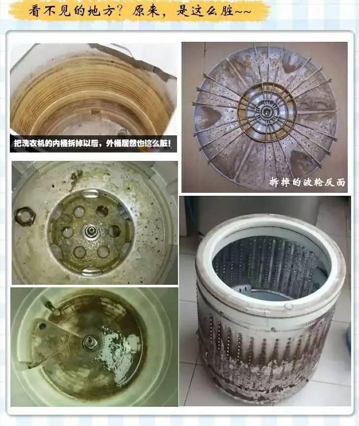 洗衣机槽不及时清洗 竟然比马桶还要脏!