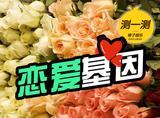 测一测 | 六种玫瑰的颜色看你的恋爱基因