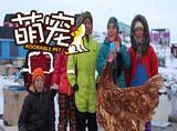 【萌宠】小伙带鸡环游世界,于是一只鸡就这样变成了全球网红