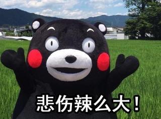 【表情包】除了熊本熊,还有哪个吉祥物,能做到辣么萌又辣么贱?