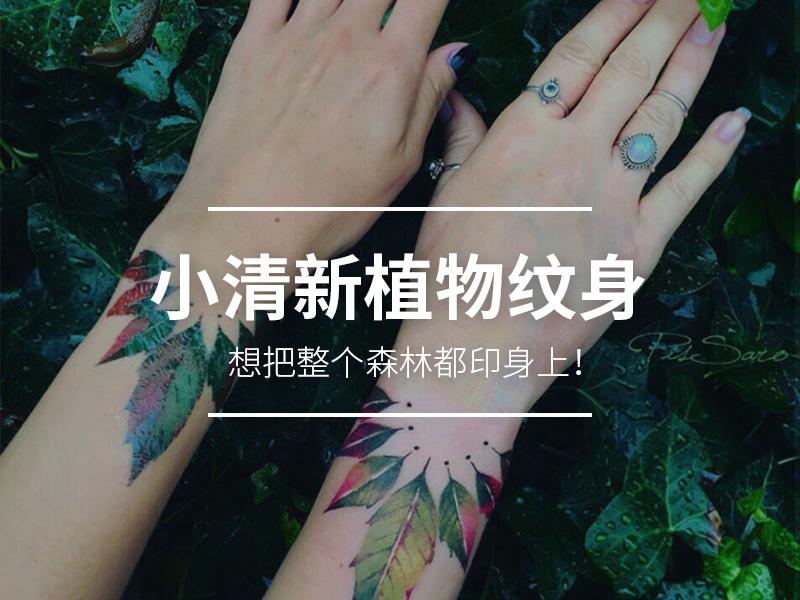 纹了个小清新植物在手臂上,从此妈妈再也不反对我纹身了!