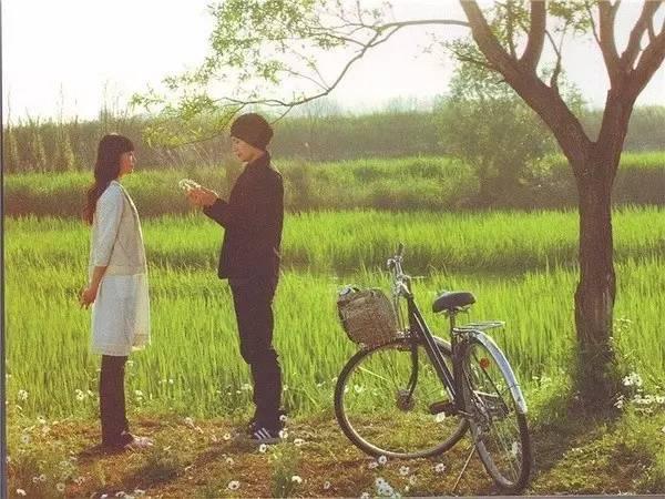 此生必看的10部日本纯爱电影,听说你都看过了?