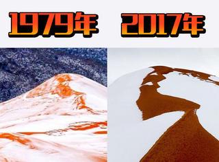 撒哈拉沙漠一下雪,各个圈子就开始骚动起来
