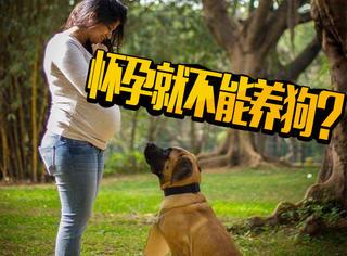 怀孕了就必须把狗送人?这位孕妇用另类方式反击
