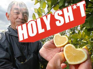 【Holy Shit】情人节咋办?据说这心形柠檬能吃出恋爱的味道!