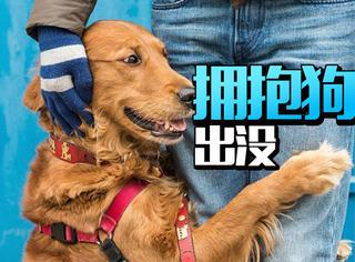 这个情人节你应该去切尔西,那里有条拥抱狗