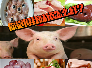猪身上究竟有多少部位可以吃?炸猪眼、猪鼻梁、猪子宫...要吐了
