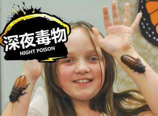 【深夜毒物】有毒,小女孩把蟑螂当宠物养还养了7千多只