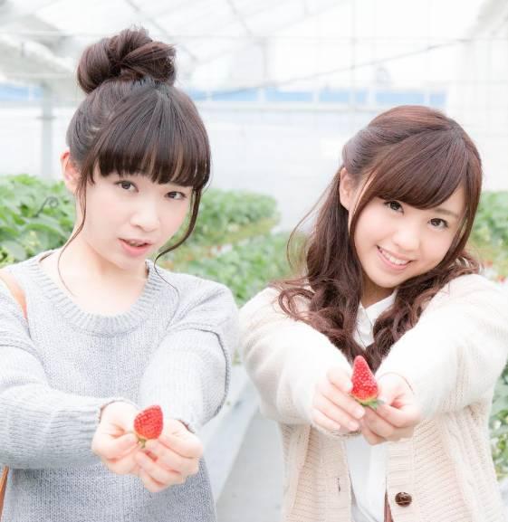 超市里买一盒草莓要吃一个月的土,日本人只有在这个地方敢花钱吃到饱!