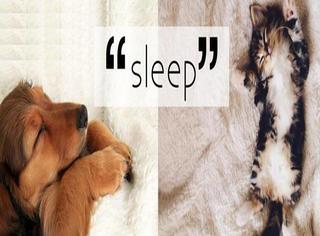 睡眠时间长竟然适合搞创意研究?可我只是爱睡觉啊