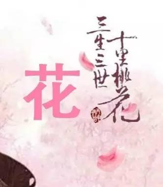 番外丨赵又廷他爸比儿子还会撩妹,他妈妈就是这样被撩来的