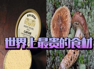 世界上最贵的食材,白蛤鱼子酱居然这么贵!