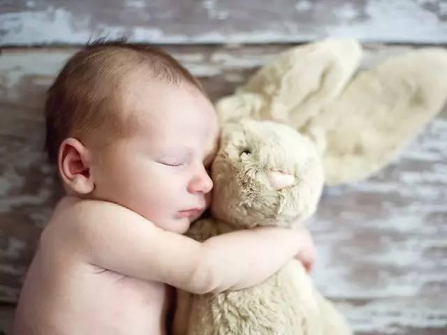 好物 | 星二代人手一只的毛绒玩偶,柔软得想一辈子抱着它