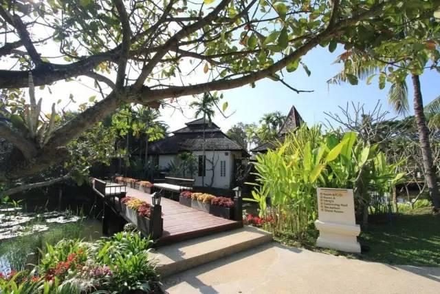 在邓丽君最爱的清迈小城,住进这个稻田间的别墅