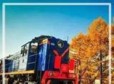 一趟北京开往莫斯科的列车,沿途风光惊艳了整个世界。