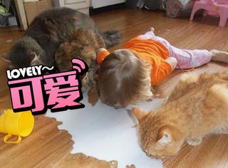 这就是为什么你不能让小孩和宠物单独在一起