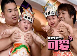 日本相扑选手新比赛,谁把宝宝弄哭谁就得第一