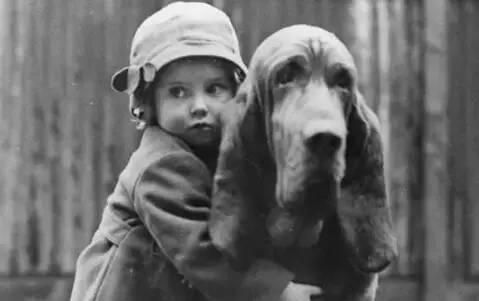 这些黑白胶片的背后,每一张都有一个关于狗狗的故事...