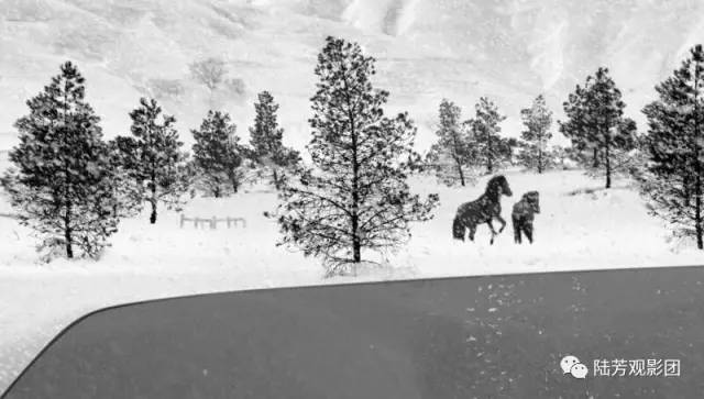 戛纳DAY9今年戛纳最大幸事是看到阿巴斯遗作《24帧》,一部满分电影