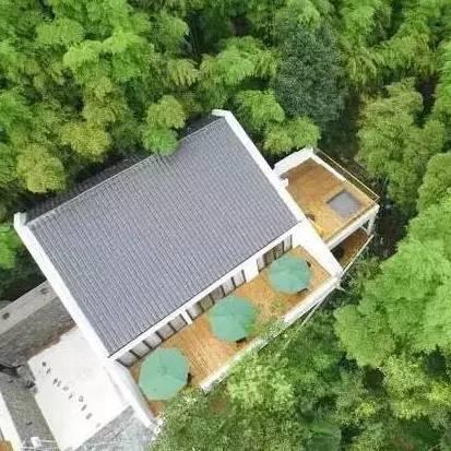 吴彦祖冯德伦扎堆造房子,于是我的目标又多一个:睡男神…开的民宿!