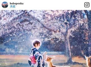 这真的是现实世界?美到窒息的日本风景