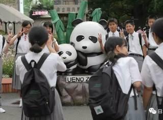疯狂!东京上野动物园大熊猫顺利产子,日本人是有多兴奋……