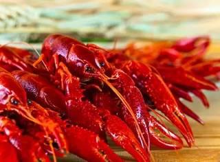 又到了最合适吃宵夜的季节,小龙虾、火锅约吗?