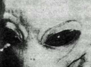 你家藏尸?藏了外星人遗体?