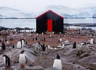 天太热,我们去找企鹅先生避暑了
