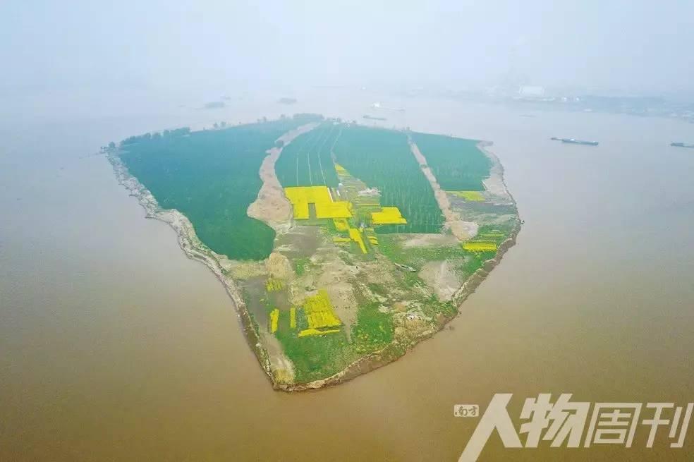 消失中的 600年长江洲   图片故事