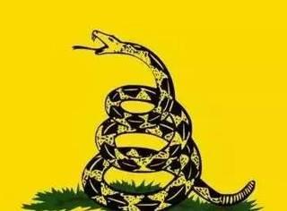 八面差点成为美国国旗的旗帜