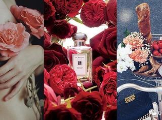 情人节 | 拜托,别再送我80年代审美的玫瑰