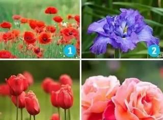 心理测试 | 10朵花选一朵,1秒看透你的性格!