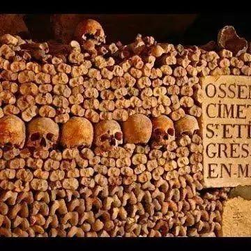 法国也有盗墓贼,不过这次小偷千辛万苦在地下墓穴兜兜转转最终偷走的是300瓶葡萄酒!