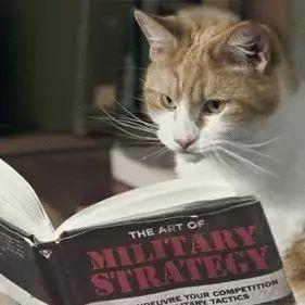 隔壁小明很喜欢看书,但是主子总是不消停,怎么办?