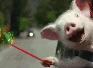 这场车祸太惨烈!惨烈到笑出杀猪声!
