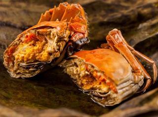 周末美食:这份大闸蟹料理清单,请你签收