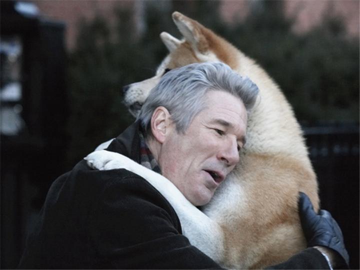 等了80年,忠犬八公终于等到带它回家的主人...